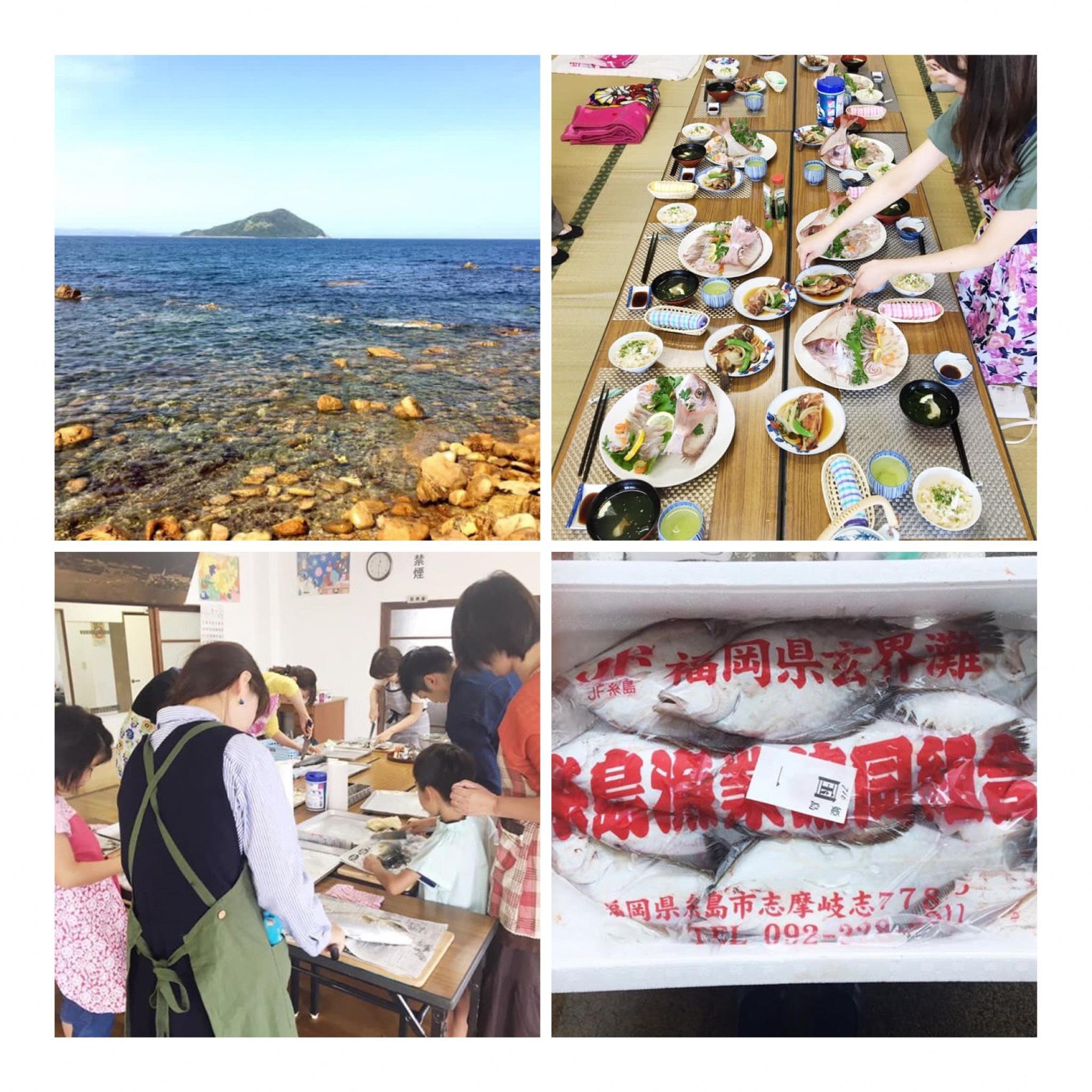 魚さばき教室 in 姫島に関する画像