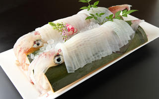 たつみ寿司 長浜店の掲載画像3