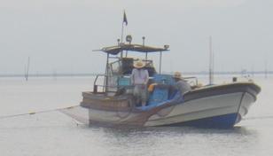 有明海のクラゲ漁の模様
