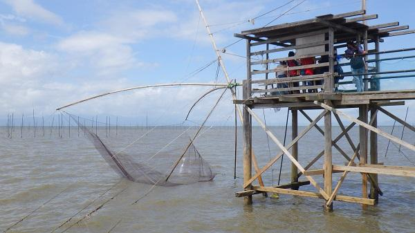 潮の満ち引きを利用して漁獲します。