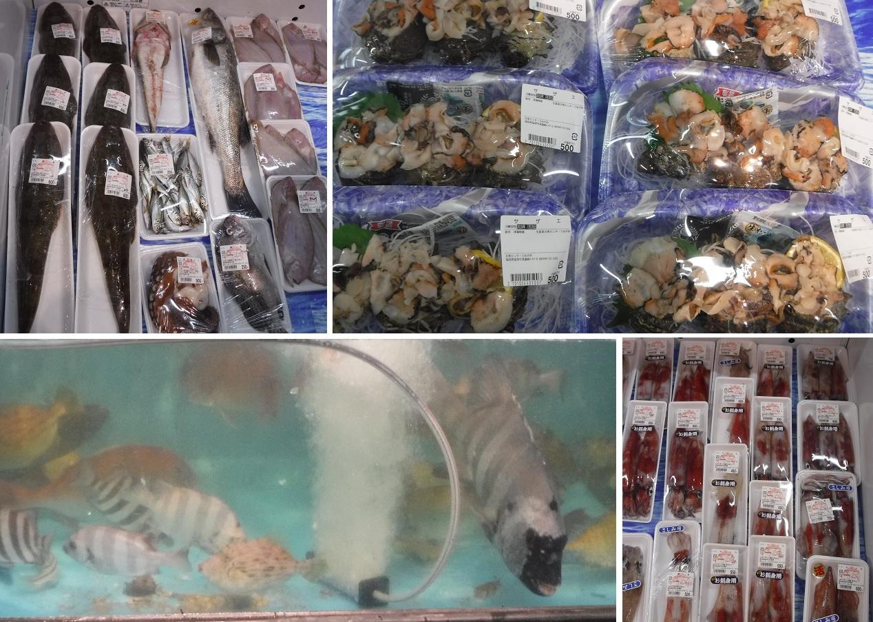 お魚センターうみがめの鮮魚や活魚
