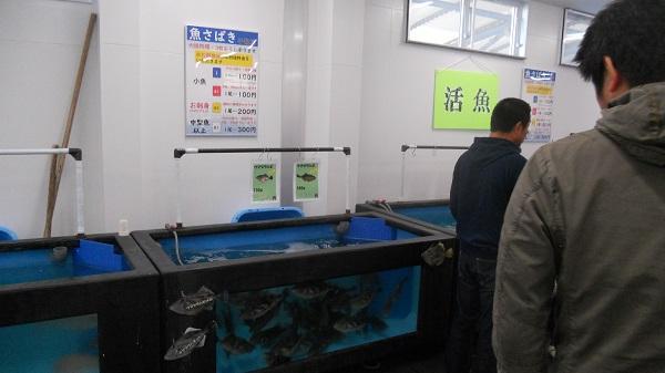 活魚コーナー
