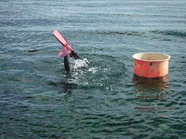 漁業者1.jpg