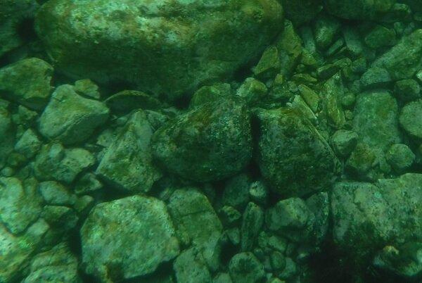 海藻のない海底.jpg