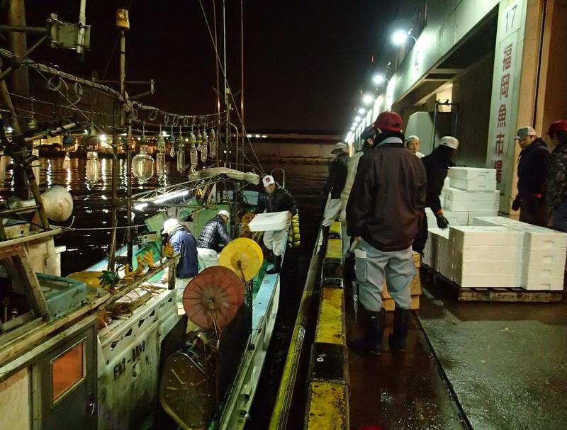 魚市場でのイカの水揚げの様子