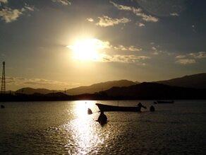 早朝の加布里干潟での操業風景