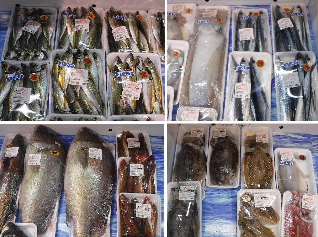 いろいろな鮮魚を売ってます