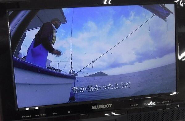 さわら漁の様子も動画で見られますよ!